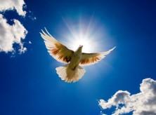 CALL FOR HOLY SPIRIT DECREE